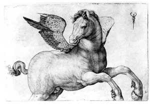 Tekening Pegasus