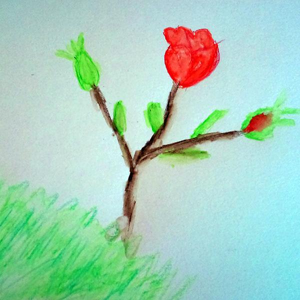Afbeelding tekening warme roos door Carla